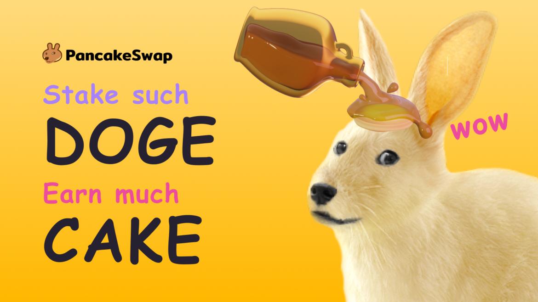 Stake DOGE on PancakeSwap