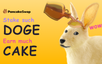 pancakeswap introduces doge to stake