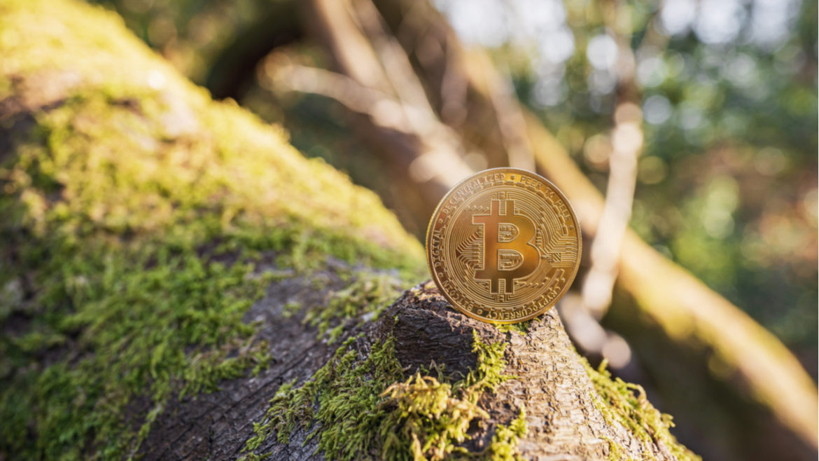 Cryptowisser : Cryptocurrency Likely to Be More Environmentally Friendly Than Traditional Banks